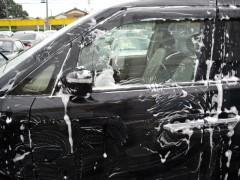 洗剤にて洗車